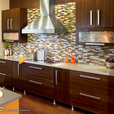 Midcentury Kitchen by Showplace Wood Products