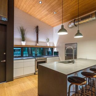 Idee per una piccola cucina minimal con lavello integrato, ante lisce, ante bianche, top in cemento, elettrodomestici in acciaio inossidabile, penisola, pavimento multicolore, paraspruzzi a finestra, parquet chiaro e top grigio