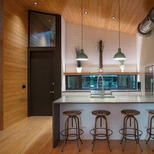 Diseño de cocina lineal, contemporánea, pequeña, abierta, con fregadero integrado, armarios con paneles lisos, puertas de armario blancas, encimera de cemento, salpicadero de vidrio, electrodomésticos de acero inoxidable, suelo de madera clara, península, suelo multicolor y encimeras grises