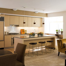 Contemporary Kitchen by Henderson Design Group