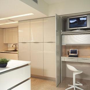 Fotos de muebles de cocina de aluminio: ideas y fotos | Houzz