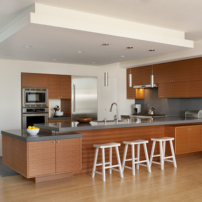 Kitchen Drop Ceiling Ceiling Mounted Wall Cabinets Design Ideas Pictures
