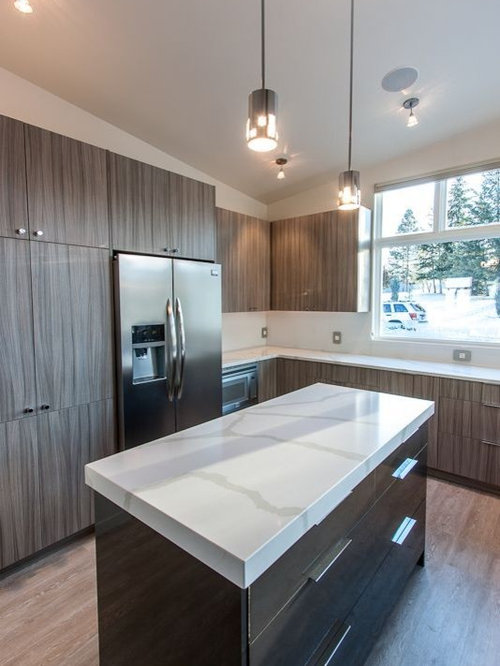 saveemail missoula modern residence kitchen - Columbia Kitchen Cabinets