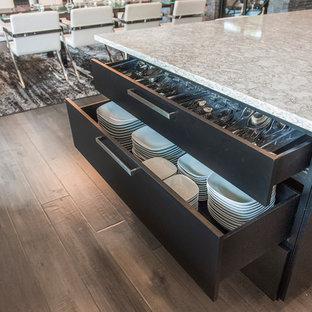 Moderne Küche in L-Form mit Vorratsschrank in Sonstige