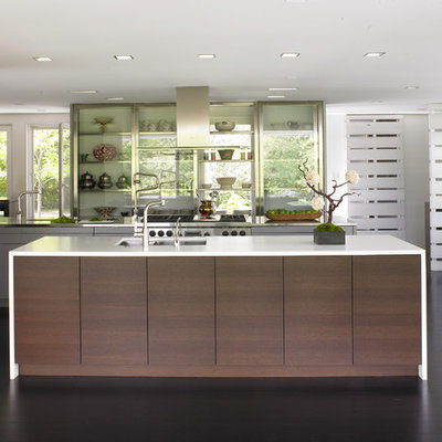 Kitchen - contemporary kitchen idea in Minneapolis with glass-front cabinets and stainless steel appliances