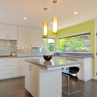 Cette image montre une cuisine minimaliste avec un placard à porte plane, des portes de placard blanches et une crédence métallisée.