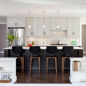 Modern DC Kitchen
