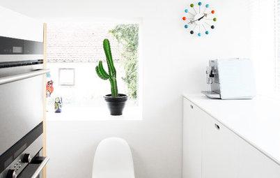 Flash tendencias: Atrévete a decorar con cactus en todas sus versiones
