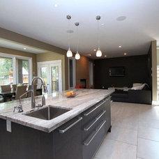 Contemporary Kitchen Modern home