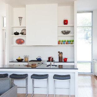 Modern Open Concept Kitchen Photos   Example Of A Minimalist Beige Floor  Open Concept Kitchen Design