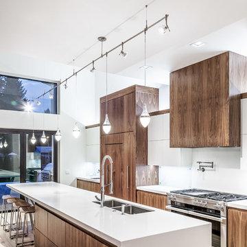 Modern Kitchen #3