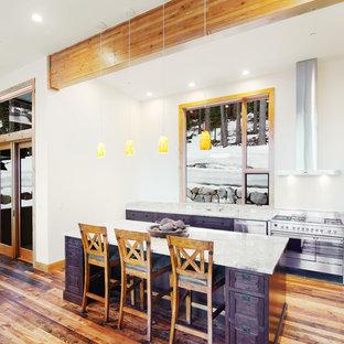 Offene, Einzeilige, Mittelgroße Moderne Küche mit Unterbauwaschbecken, Kassettenfronten, lila Schränken, Marmor-Arbeitsplatte, Küchengeräten aus Edelstahl, braunem Holzboden, Kücheninsel und braunem Boden in Sonstige