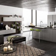 Contemporary Kitchen Cabinets by Euro Interior California