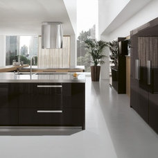 Contemporary Kitchen Cabinetry by Euro Interior California
