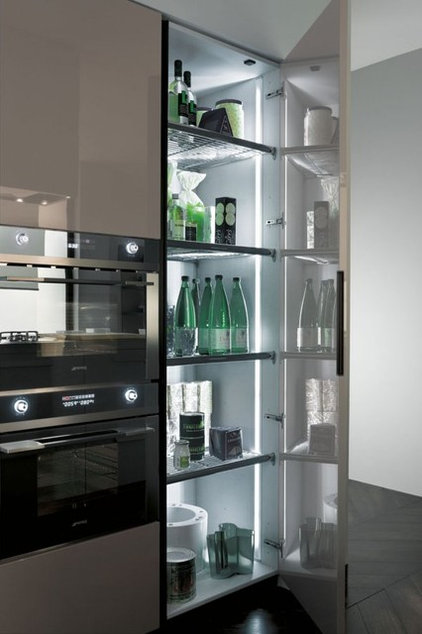 Modern Kitchen Cabinets by Euro Interior California