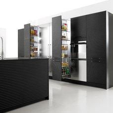 Modern Kitchen Cabinets Modern Kitchen Cabinets