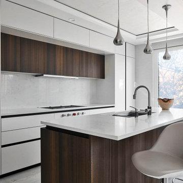 Modern kitchen in Manhattan Beach, Brooklyn