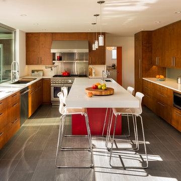 modern kitchen in piedmont