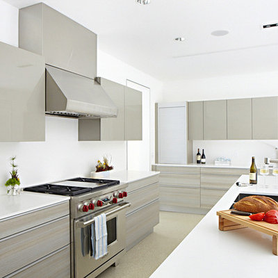 Minimalist l-shaped kitchen photo in Dallas with an undermount sink, flat-panel cabinets and gray cabinets