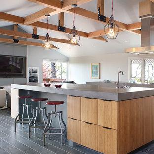 Esempio di una grande cucina design con lavello integrato, ante lisce, ante in legno chiaro, top in cemento, elettrodomestici da incasso, pavimento con cementine, 2 o più isole, pavimento grigio e top grigio