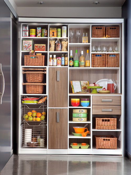 Pantry systems ideas pictures remodel and decor for Modern kitchen pantry