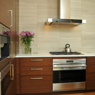 Modern Kitchen with Charisma - Winfield, IL
