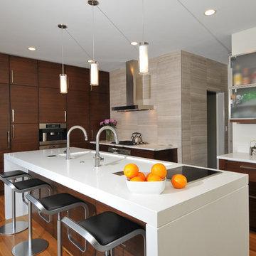 Modern Kitchen with Charisma - Winfield, IL