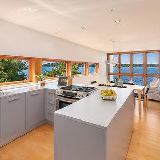 シアトルの中サイズのビーチスタイルのおしゃれなキッチン (ドロップインシンク、グレーのキャビネット、オレンジの床、グレーのキッチンカウンター、フラットパネル扉のキャビネット、ガラスまたは窓のキッチンパネル、シルバーの調理設備の、無垢フローリング) の写真