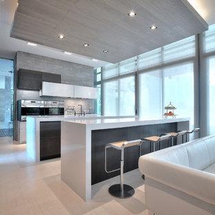 マイアミの広いモダンスタイルのおしゃれなキッチン (ダブルシンク、フラットパネル扉のキャビネット、白いキャビネット、クオーツストーンカウンター、グレーのキッチンパネル、セラミックタイルのキッチンパネル、シルバーの調理設備、淡色無垢フローリング) の写真