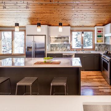 Modern Minneapolis Ranch