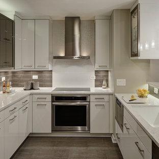 Modern Monochromatic Kitchen - Wheaton, IL