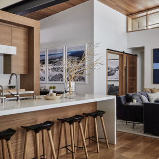 Example of a trendy galley medium tone wood floor and brown floor kitchen design in Los Angeles with an undermount sink, flat-panel cabinets, medium tone wood cabinets, stainless steel appliances, an island and white countertops