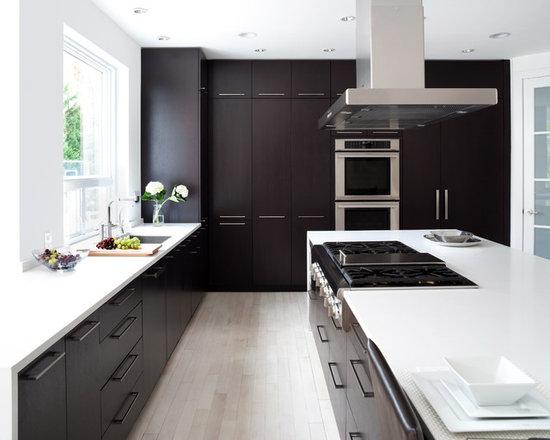 Contemporary Kitchens With Dark Cabinets dark cabinet kitchens | houzz