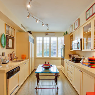 Eclectic enclosed kitchen inspiration - Example of an eclectic galley enclosed kitchen design in DC Metro with shaker cabinets, a double-bowl sink, yellow cabinets and paneled appliances