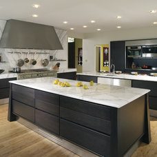 Contemporary Kitchen by Conceptual Kitchens & Millwork