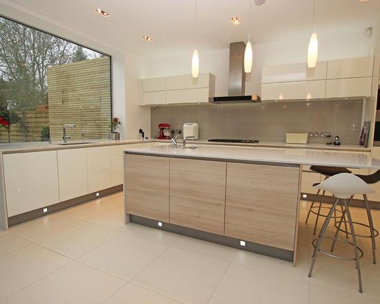 Modern Wood Kitchen modern wood kitchens | houzz