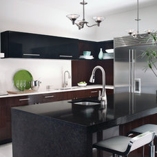 Modern Kitchen by Moen