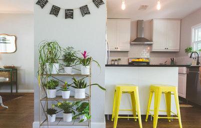 Chi sono i Plantfluencer e Perché il Giardinaggio Adesso è Indoor