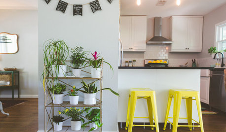 10 Positively Great Display Ideas for Your Houseplants