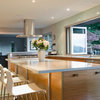 My Houzz: Full-Tilt Reinvention for a 1950s Ranch