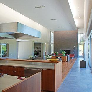 サンフランシスコの大きいモダンスタイルのおしゃれなキッチン (アンダーカウンターシンク、フラットパネル扉のキャビネット、濃色木目調キャビネット、コンクリートカウンター、シルバーの調理設備の、濃色無垢フローリング、茶色い床) の写真