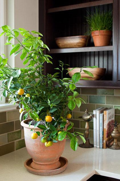 Contemporary Kitchen by Lauren Liess Interiors
