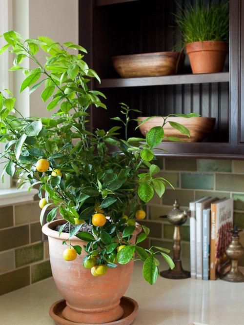 lemon kitchen ideas, pictures, remodel and decor