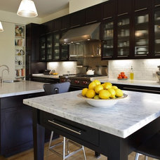 Contemporary Kitchen by Michael Mullin Architect