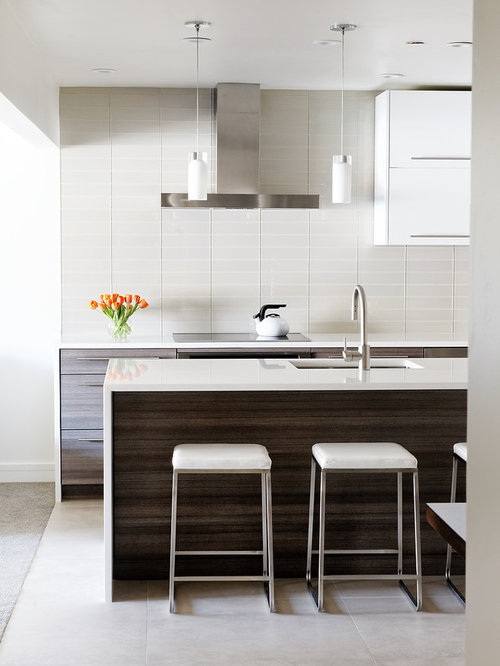 mid sized modern galley kitchen idea with flat panel cabinets white backsplash