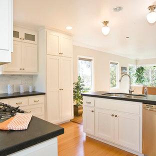 Idéer för att renovera ett vintage kök, med en dubbel diskho, luckor med infälld panel och vita skåp