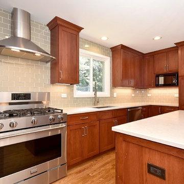 Northbrook Kitchen Remodel