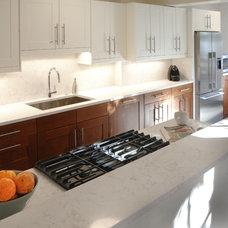 Transitional Kitchen by liza ryner design