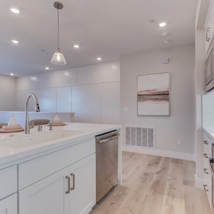 Open concept kitchen appliance - Inspiration for a single-wall open concept kitchen remodel in San Francisco with an undermount sink, recessed-panel cabinets, stainless steel appliances and an island