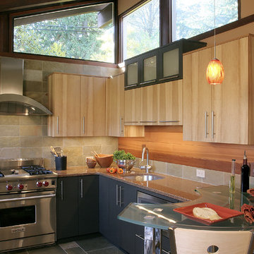 NW Contemporary Kitchen